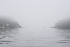 Fog in Bamfield Inlet