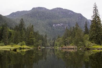 Waump Creek