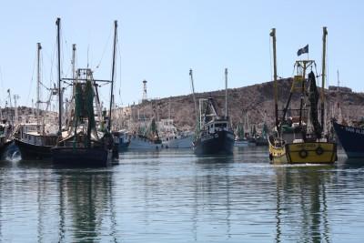 modelos de puerto penasco mexico