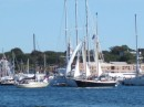 A buzz of activity during Boat Show at Newport