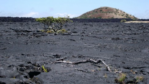 Lava fields on Big Island