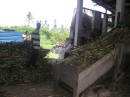 The sugar cane is placed on a conveyor belt and gets crushed. The cane juice flows in a trough to another building..JPG