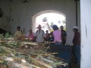 The sugar cane is cut from the nearby plantation for making the rum.JPG