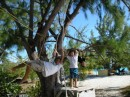 Kelby and David playing on the tree swing at Volleyball Beach.
