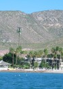 La Paz - Gigantic palm tree or cell phone tower in disguise?