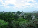 Tikal Temple IV - View from atop Temple IV, also knows as the Temple of the Two Headed Snake. Simply a spectacular view.