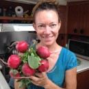Radishes the size of apples