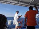 Fish killing was on!  Dave caught several tuna and a Dorado!