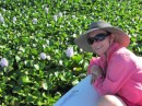 Dee admiring the water hyacinth.  Actually, they are a real problem up here, clogging up the channels.