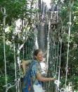 Alison on the canopy walkway
