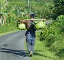Carrying palm-frond baskets