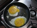 Fried megapode eggs. Check out those yolks!