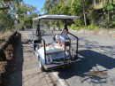 Jake on the back of the buggy