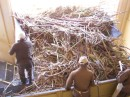 Men processing the sugar cane at the factory
