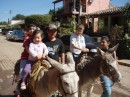 Donkey rides.  They said I was too big... :(