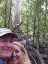 Giant Kauri tree.  Check out the very civilized hiking