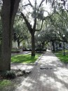 Savannah offers quiet walks through beautiful squares draped with Spanish Moss.  The historic downtown area is dotted with twenty-four such squares.