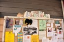lefty checks out the Bolinas town bulletin board