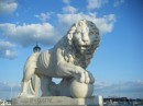 One of the lions in St Augustine
