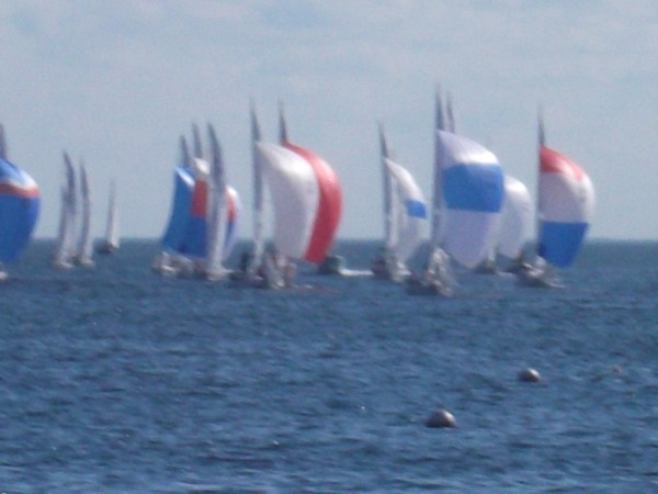 Lot of sailboat racing on Key Biscayne.  Many of the olympic trials occured here.