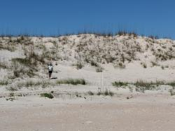 Dunes, St Augustine State Park