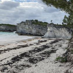 Limestone Cliffs, Lighthouse Point
