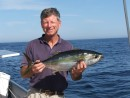 a nice yellowfin tuna: A nice Yellow Fin tuna