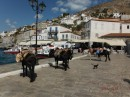Hydra, no motorized vehicles (not even bicycles)