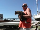 Moving Boat Kitty from boat...She is not a happy kitty
