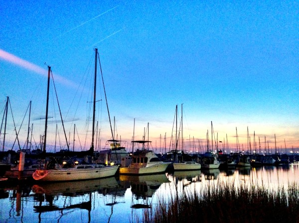 Marina at Charleston, South Carolina, USA