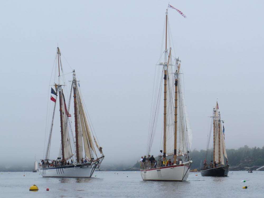 Windjammers entering Boothbay Harbor, Maine