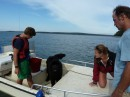 Two college kids visiting with their Newfoundland dog, Maine, USA