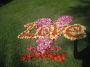 Someone created this with used flowers on a lawn in Lahaina.  I got to see at least two different ones