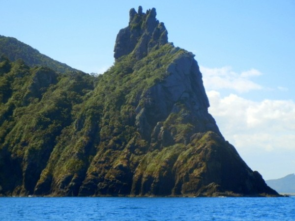 Jagged peak at Bream Head
