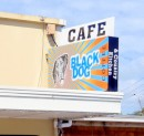 "The sign on this cafe in Matakana reminded us of our friends Deb & Drew, whose boat is (was - they sold it after reaching New Zealand) named ""Black Dog"""