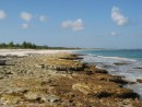 Rocky east beach onthe Northeast Providence Channel, Great Abaco Island