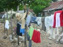 9.29.07  Downtown Laundry Day: There are no cloth lines in Luperon. Laundry is being dried on Barb Wire.
