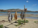 drying fish at Nosy Mitsio