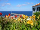Flores-the island of flowers- and a welcome sight after 13 days from Lunenburg to Azores
