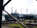 Sea Shepherd-Farley Mowat,