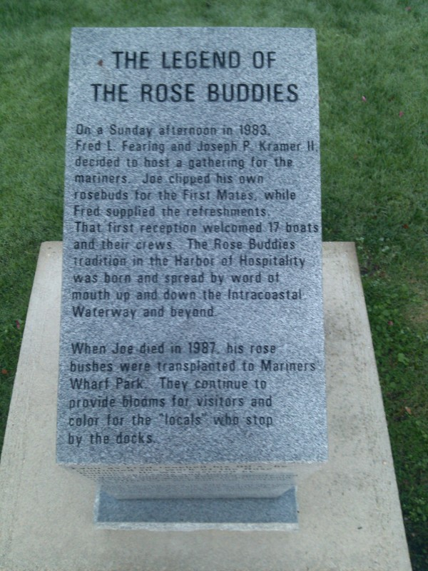 "The story of the ""rose buddies"""
