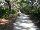 Biking trail, Jekyll Is. Ga.