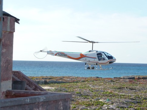 Helicopter landing on Bird Island.