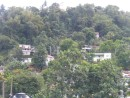 Homes on the hill-side, Port Antonio