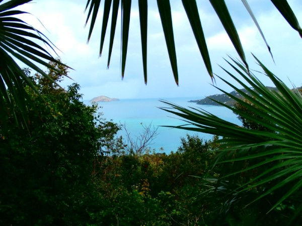 Above Megans Bay