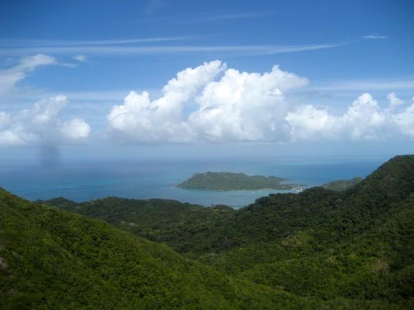 El Pico View