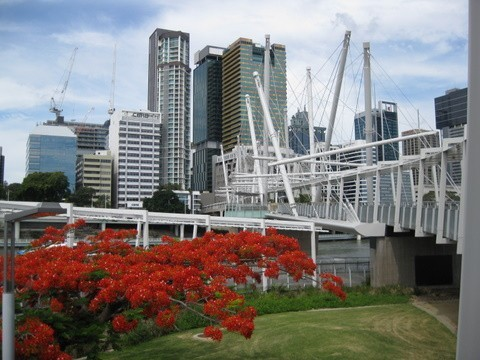 This is the Kurilpa pedestrian bridge across the river from the Cultural center to the CBD.