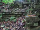 More un-excavated ruins showing through the jungle.  IT is easy to see how the jungle growth destroys the structures.