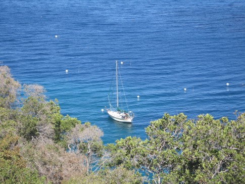 Here is Active Transport on its mooring at Catalina.  We took this shot as we walked over to the Two Harbors area from the marine lab.