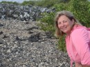 Donna and the heard of iguanas